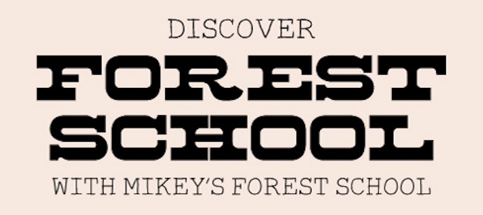 You are currently viewing Discover Forest School YR-Y6