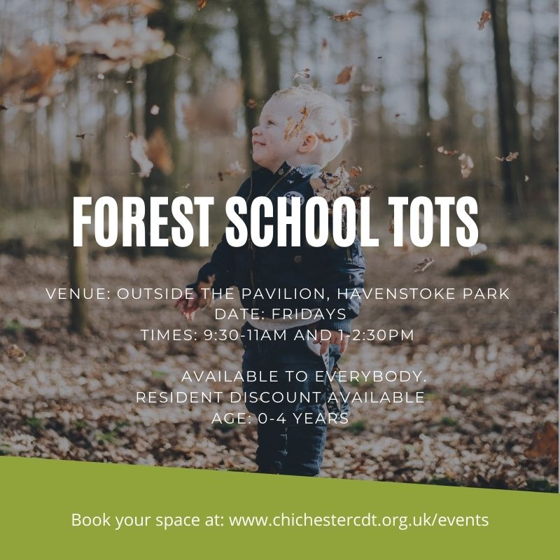 You are currently viewing Forest School Tots – Afternoon