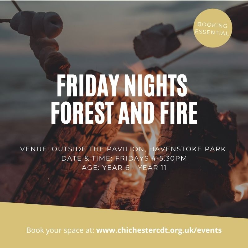 You are currently viewing Friday Night, Forest & Fire