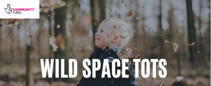 You are currently viewing The Wild Space at Havenstoke Park